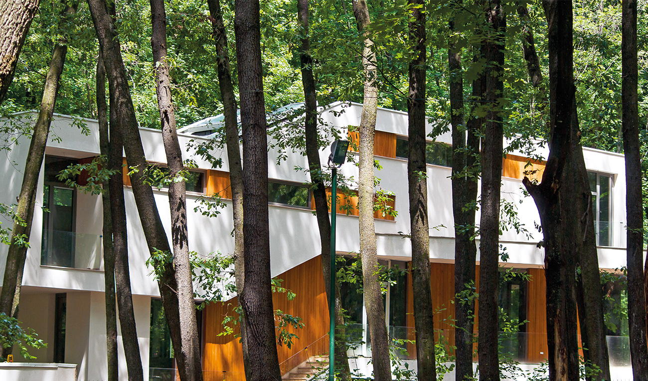 foresthouse10