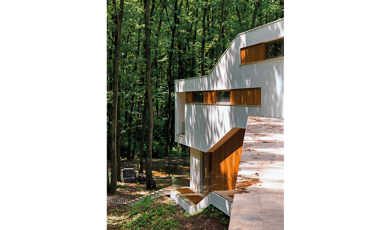 foresthouse5