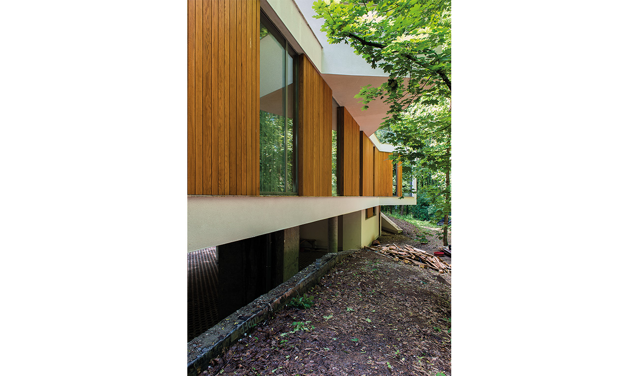 foresthouse7