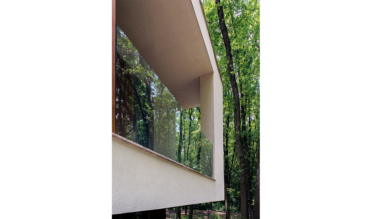 foresthouse8
